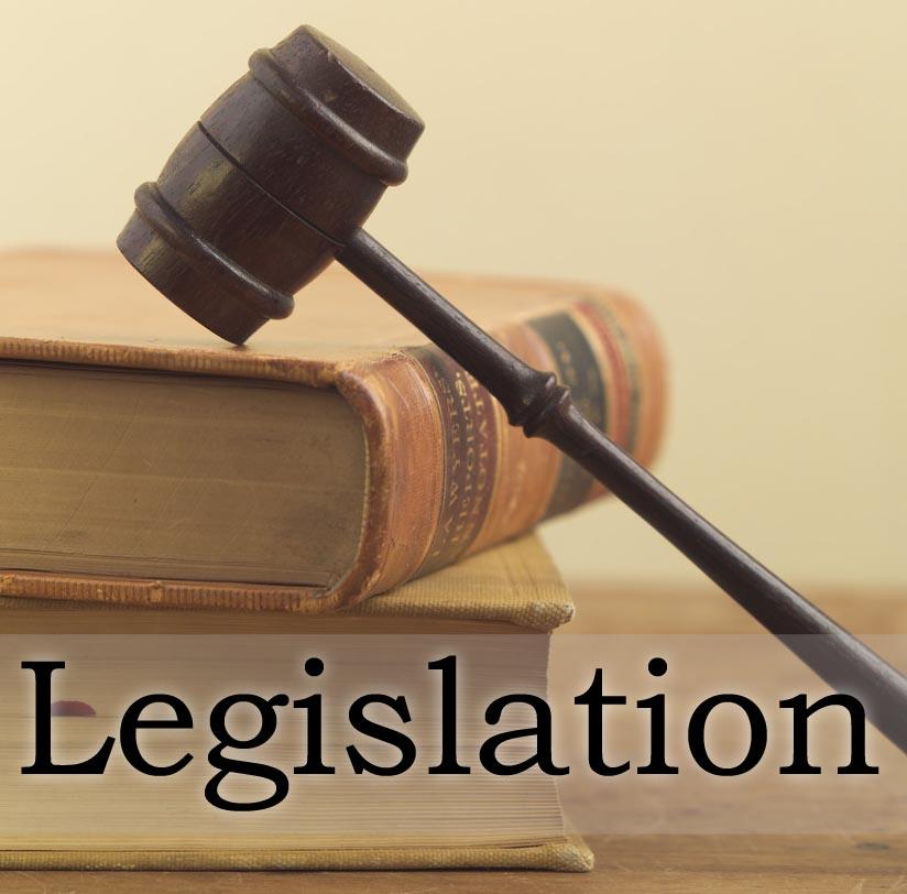 australian law delegated legislation authorities essay