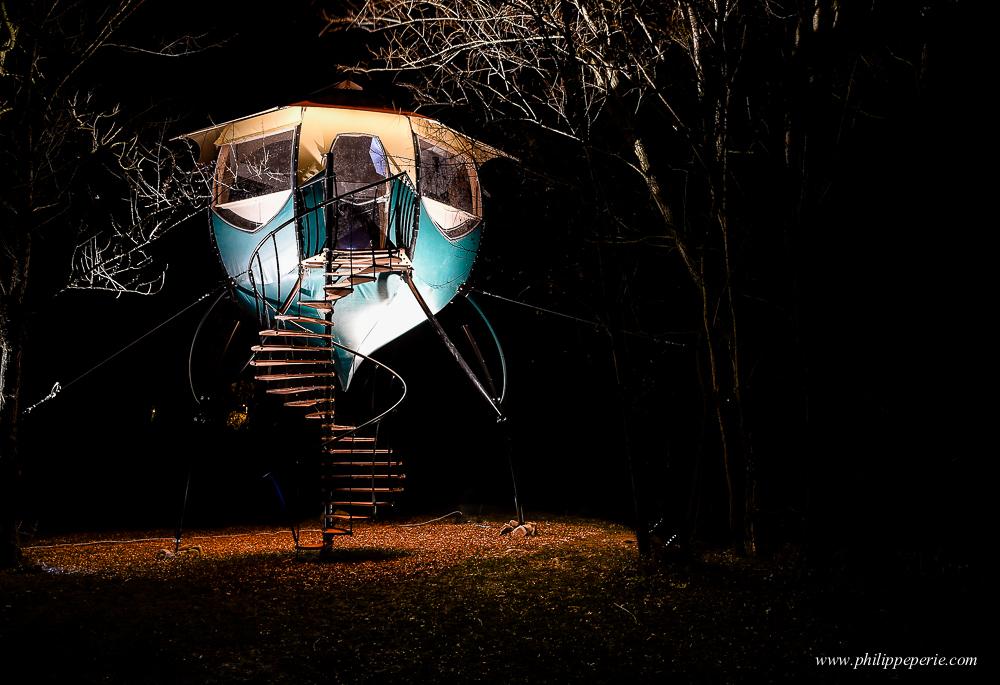 Selvao campanule de nuit-10