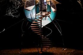 Selvao campanule de nuit-5