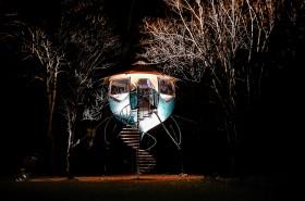 Selvao campanule de nuit-7