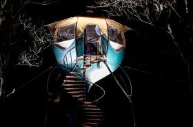 Selvao campanule de nuit-9